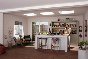 VELUX AMERICA EXPANDS FLAT ROOF PRODUCTS  WITH CURVED GLASS AND ROOF ACCESS SKYLIGHTS