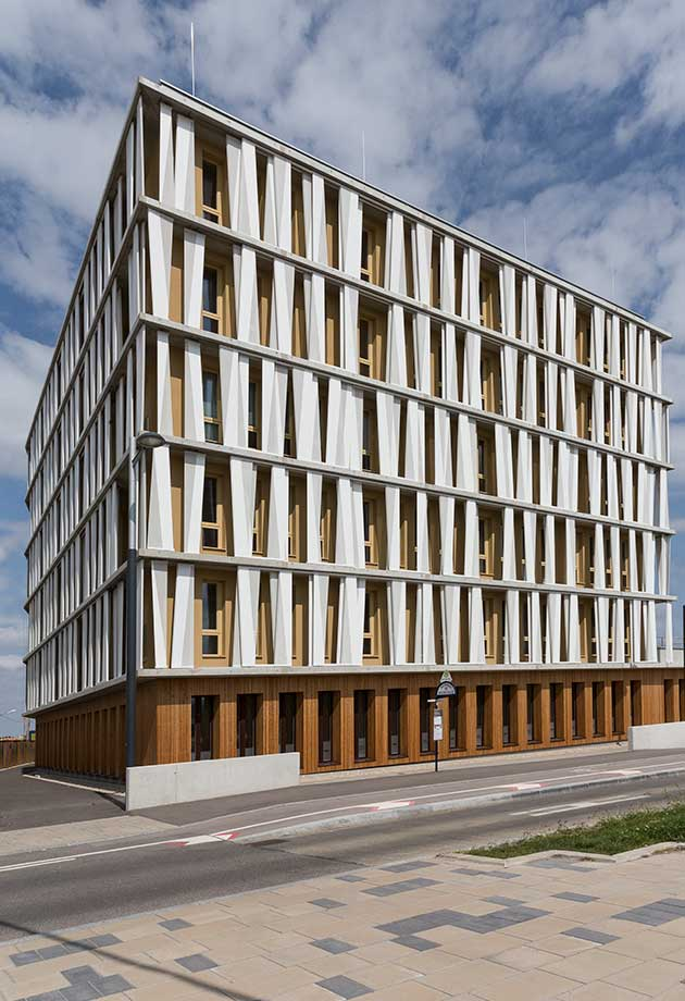 The white facade elements complete the wooden look of the office building