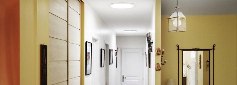 easy ceiling дилерская версия